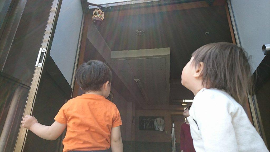 https://www.gurutto-iwaki.com/db_img/cl_img/1577/news/images/app_o5Zhz0_201905111530.jpg