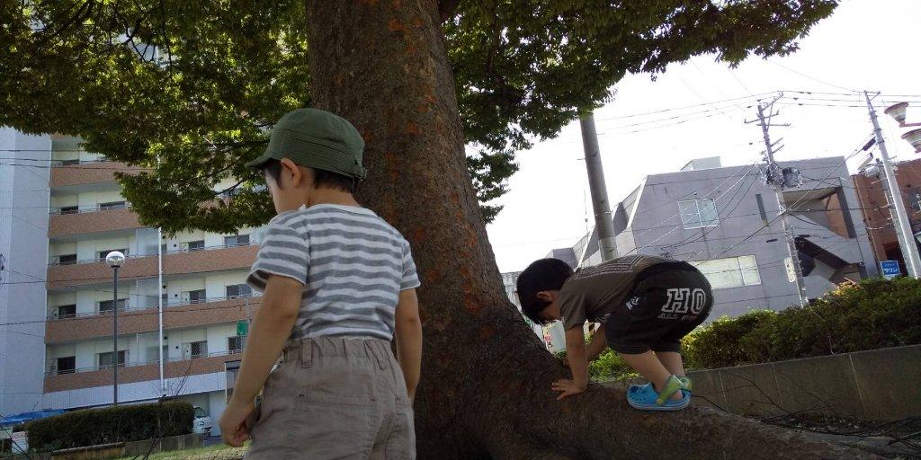 https://www.gurutto-iwaki.com/db_img/cl_img/1577/news/images/app_yRXJaJ_201909101339.jpg